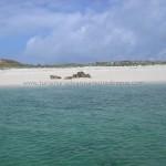 Hacer turismo hasta la isla de Areoso en la Ria de Arosa